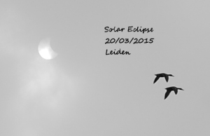 The eclipse was only just barely sighted through the clouds for mere moments, yet the crowd cheered!