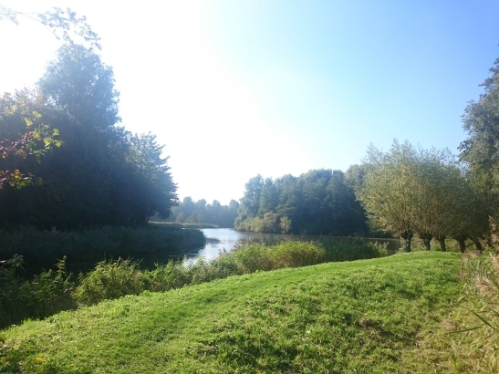 The view of the small lake in Westerpark